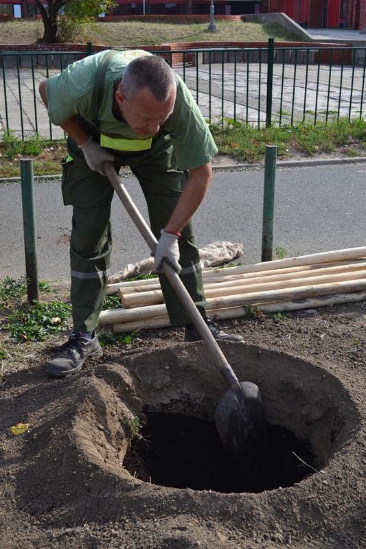 Радна акција 2018 Зелени Београд 003