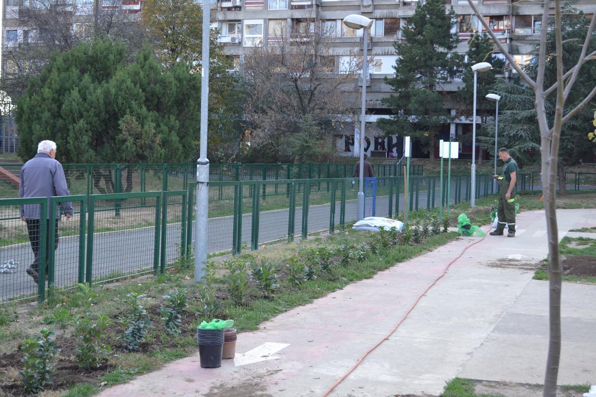 Радна акција 2018 Зелени Београд 043