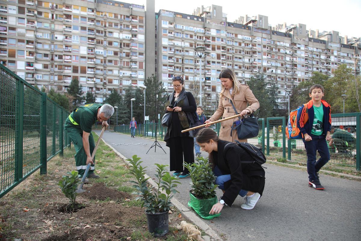 Радна акција 2018 Зелени Београд 046